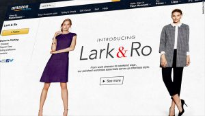 Amazon takes on the high street with own new brand